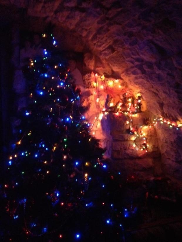 The Christmas tree & Nativity Scene at my home