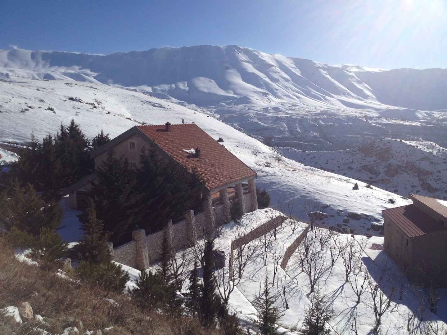 Winter In Lebanon The Cedars A Separate State Of Mind