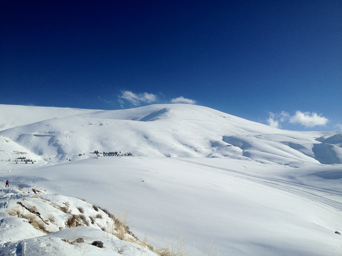 Winter in Lebanon: The Cedars | A Separate State of Mind ...