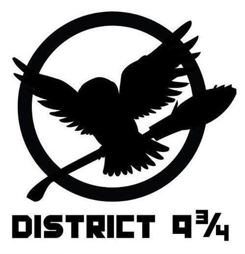 The Hunger Games Harry Potter District 9 34 A Separate State