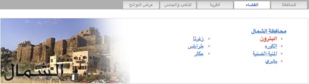 Lebanon Voting Elections 2013 - 3